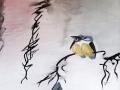 """Eisvogel"" - 30 x 40 cm - Aquarell"